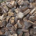 Logs (sustainability)